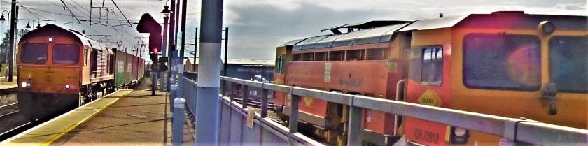 P1270761 (2)