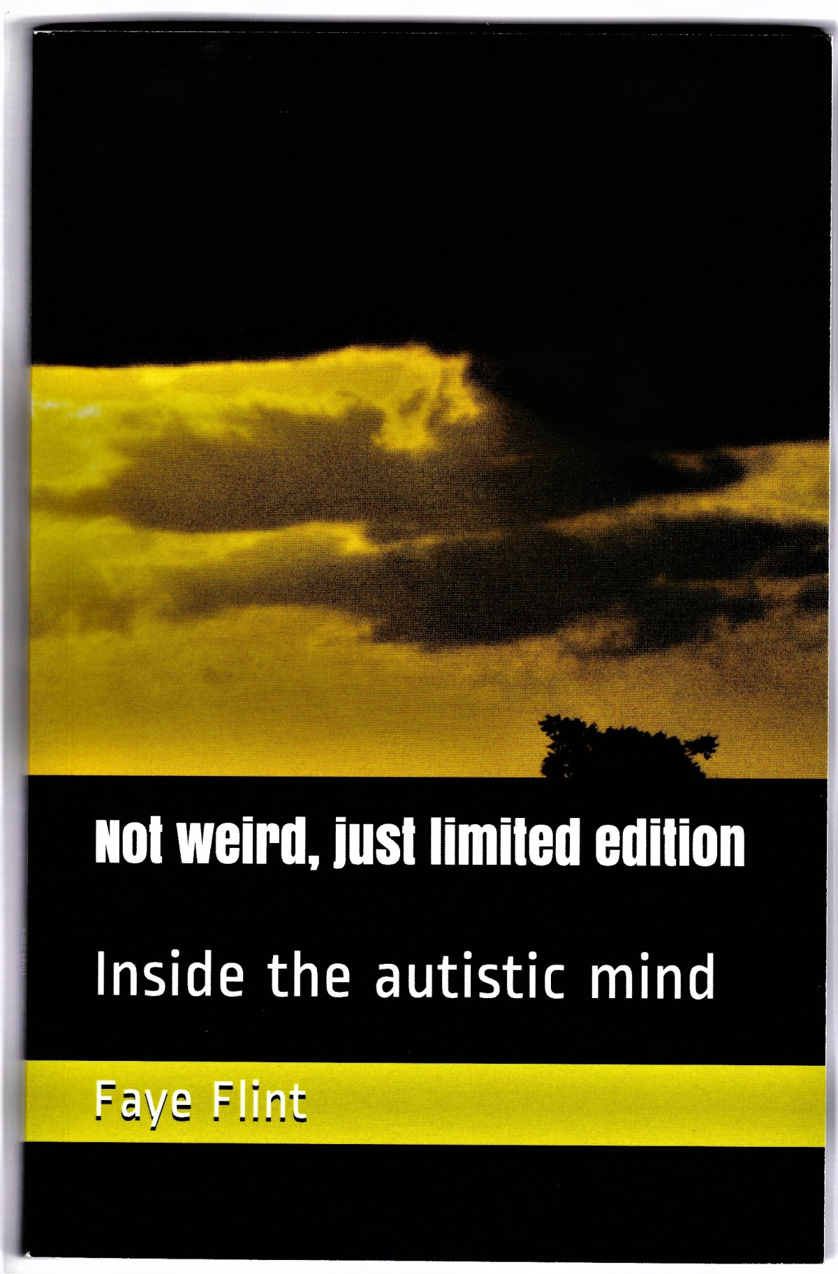 Not Weird, Just Limited Edition: Inside the Autistic Mind – Book Review