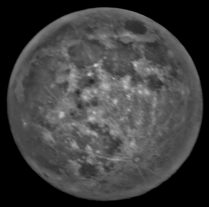 P1320569 (3)